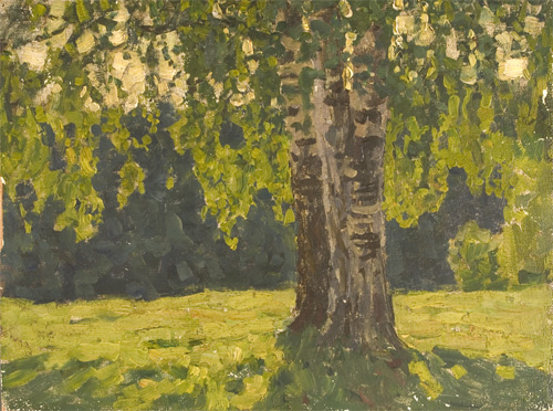 Nikita Fedosov Old Birch
