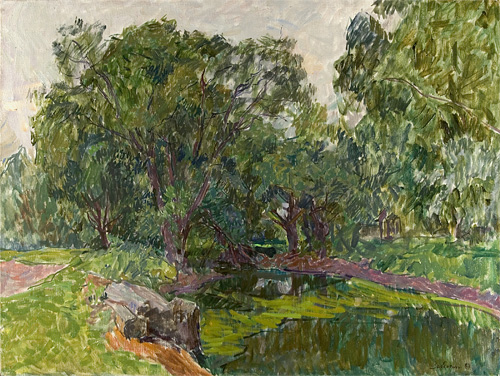 Vyacheslav Zabelin The Pond Covered by Vegitation